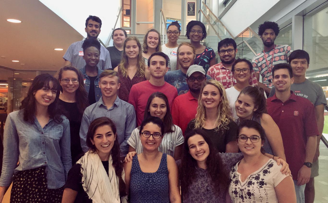 Social Innovation Fellows